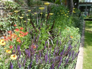 perennial planting in this Barnes garden design