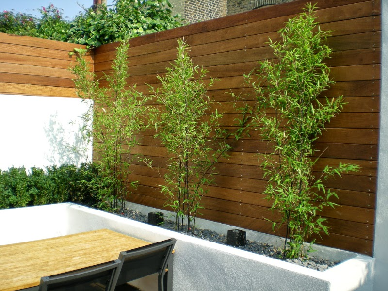 Superieur Best Garden Design Using Bamboo Ideas   Garden And Landscape Ideas .