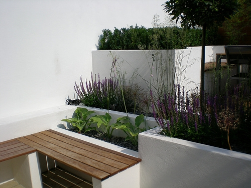 Bench and raised beds