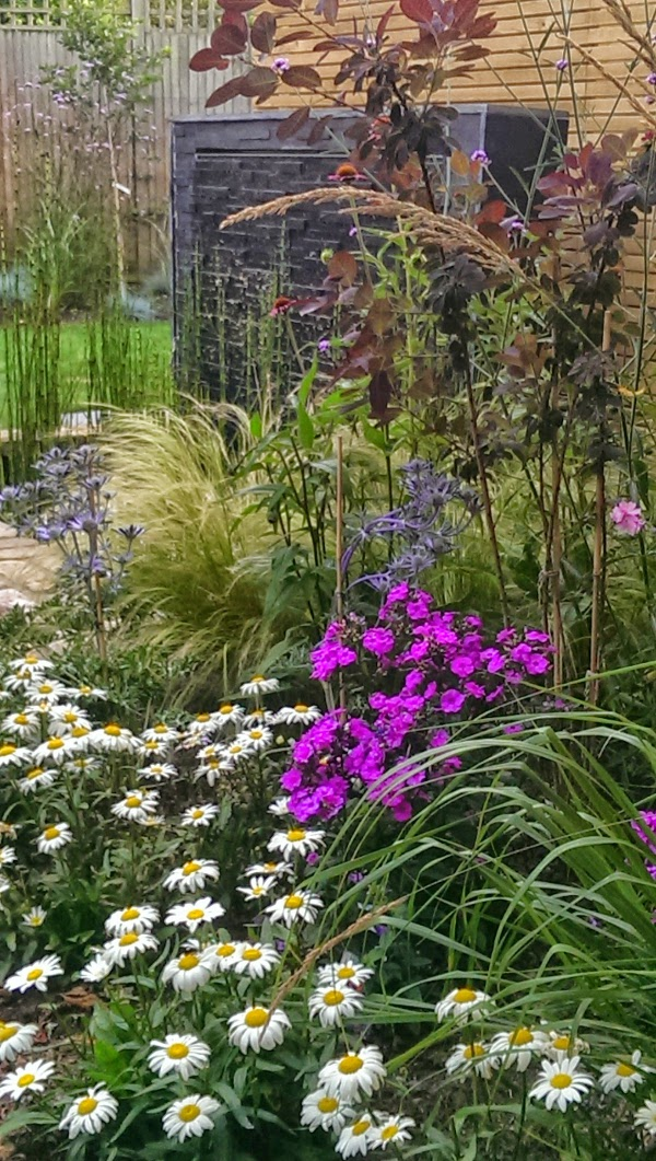 stunning perennial planting in Richmond design