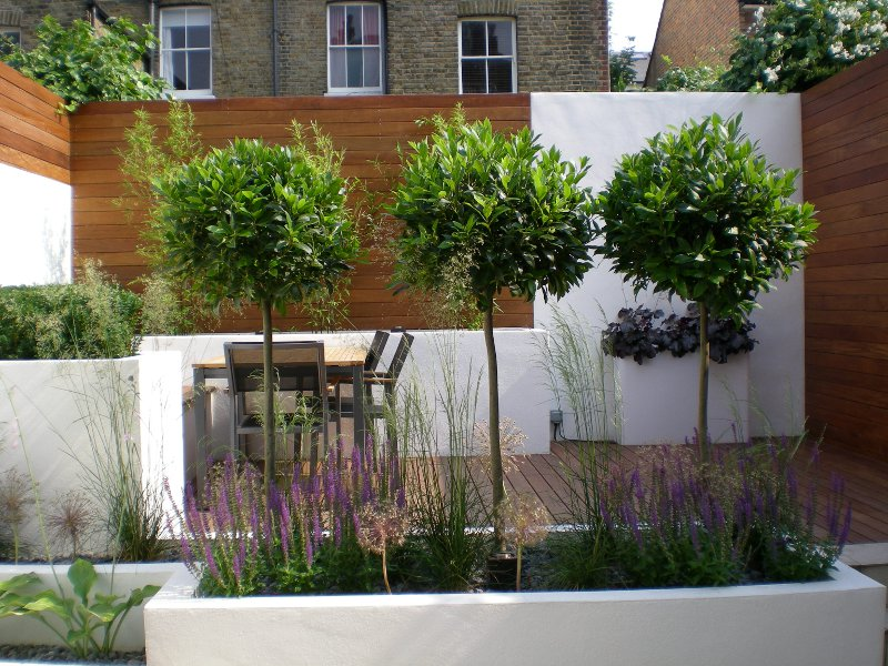 garden design in Wandsworth