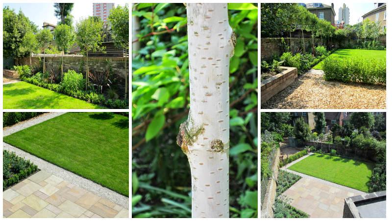 garden design in stockwell
